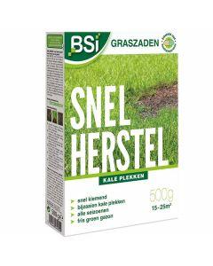 semences-bsi-rénovateur-gazon-500g