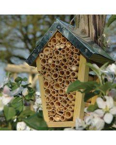 Hôtel-d'insectes-abeilles-nature-arbre-nid-abri-d'abeilles