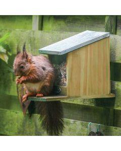 Abri-mangeoire-pour-écureuil-graines